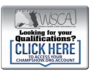 ChampShowQualificationsButton_new copy